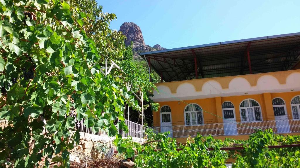Çiftehan kaplıcaları Çevik Pansiyon, enfes yeşil doğası ve yemyeşil asma bahçeleri ile